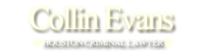 Criminal Lawyer in Houston